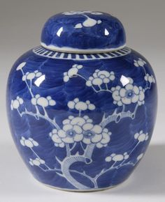 Chinese Blue and White Porcelain Ginger Jar 19 C.
