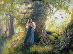 Lost in The Enchanted Forest by Mary Baxter St Clair