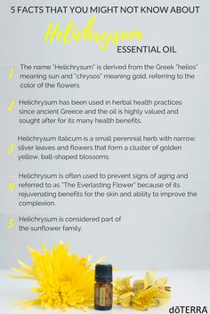 Referred to by some as the Everlasting or Immortal Flower, the Helichrysum plant offers several benefits to the skin. With rejuvenating and restorative properties, doTERRA Helichrysum essential oil has many uses, including reducing the appearance of blemishes and wrinkles, providing a soothing sensation for the skin, and promoting a healthy metabolism.* Often used in anti-aging products, Helichrysum oil is best known for the endless applications it holds for improving the skin.