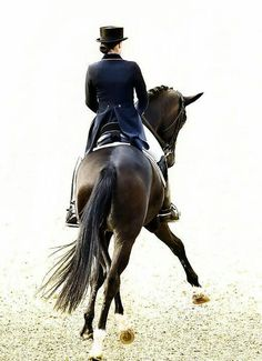 Equestrienne...