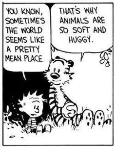 That's why animals are so soft and huggy