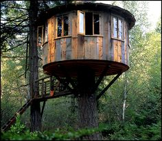 treehouses by Pete Nelson    Interview with Pete Nelson of Animal Planet's Treehouse Masters ...