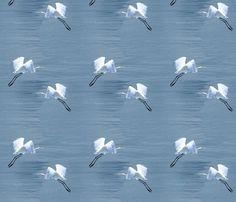 Eureka Egrets fabric by rima on Spoonflower - custom fabric