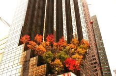 NYC. TRUMP TOWER at 5th. Ave. In Fall time. // Le blog INSOLITE de NELLOU