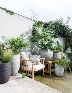 Grote potten: Capi, grote planten, terras. Foto: Sjoerd Eickmans, Styling: Moniek Visser