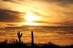 Arizona :)