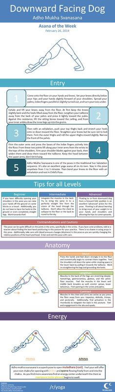 Need To Fix Dog-related Problems? The Advice Here Can Help *** Visit the image link for more details.