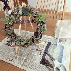 のタニラー⚘/ウェルカムボード/英字新聞/イーゼル/北欧ナチュラル/趣味の時間…などについてのインテリア実例を紹介。「秋から冬にかけて紅葉していた多肉のリース。 根が伸び伸びになっていたので春に向けて剪定しました✂︎ 素人ながら、なんとか1年以上育てることができました☺︎」(この写真は 2017-01-31 12:22:03 に共有されました)
