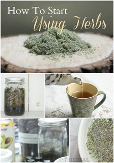 How To Start Using Herbs Growing Up Herbal Interested in learning how to use herbs for your family? Come along with me in this new series, and I'll show you how! Natural Health Remedies, Holistic Remedies, Herbal Remedies, Healing Herbs, Medicinal Plants, Natural Healing, Natural Medicine, Herbal Medicine, Cha Natural