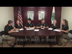 How does the parliamentary procedure work?