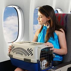 Traveling with Your Dog by Airplane | Dogster