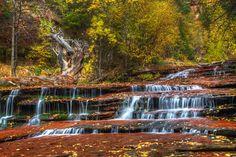 Waterfall at Zion Nat'l Park