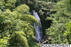 Mooie verschijnselen, het groene bos en een pruttelend watervalletje! God maakte de schepping om volledig tot rust te komen. #Godmoment