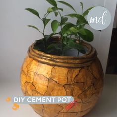 How to make a cement pot at home By: Dream Fairy DIY Diy Projects Cement, Concrete Crafts, Diy Cement Planters, Cement Flower Pots, Diy Crafts To Do, Diy Crafts Hacks, Plaster Crafts, Cement Art, Diy Flowers