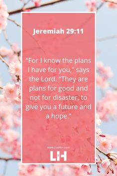 Bible Verses for Inspiration in 2020 – Live Him Biblical Quotes, Scripture Quotes, Religious Quotes, Bible Scriptures, Spiritual Quotes, Bible Verse Hope, Bible Verses On Love, Bible Verses For Encouragement, Bible Verses About Strength