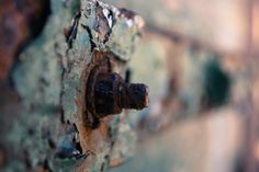 rust, photography, katie bodmann photography, bolt