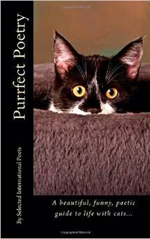 Poetry by my cat Katie is in this new release. Find on Amazon.com Rachael Ikins
