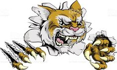A tough tiger animal sports mascot breaking through a wall Tiger Claw Tattoo, Crocodile Illustration, Pet Tiger, Ivory Coast, A Cartoon, Free Vector Art, Claws, Graphic Illustration, Drawings