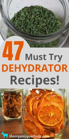 Are you looking for the food dehydrator recipes? This is the ultimate list of dehydrated food recipes and resources! Whether you are a beginner or experienced at dehydrating, this list is for you! Best Food Dehydrator, Dehydrator Recipes, Healthy Snacks, Healthy Eating, Healthy Recipes, Canning Recipes, Snack Recipes, Canning Tips, Konservierung Von Lebensmitteln
