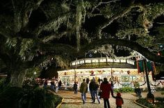 City Park in New Orleans is a great place to spend time with the family. It has everything from miniature golf and amusement park activities to gorgeous oak trees, perfect for a picnic!