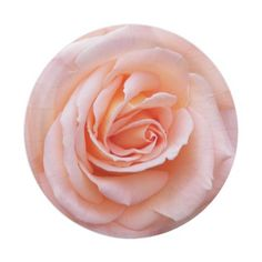 Blushing Rose Floral 7 Inch Paper Plate #partyideas #partysupplies