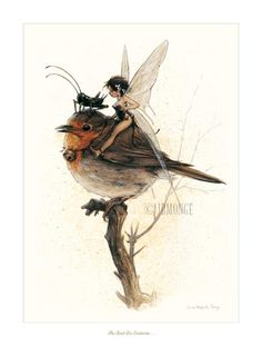 brown - bird with faery - illustration - Jean-Baptiste Monge Fairy Dust, Fairy Land, Fairy Tales, Magical Creatures, Fantasy Creatures, Illustrations, Illustration Art, Elves And Fairies, Flower Fairies