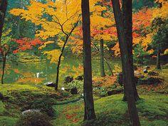 Moss Garden / Saiho-ji temple Kyoto 西芳寺
