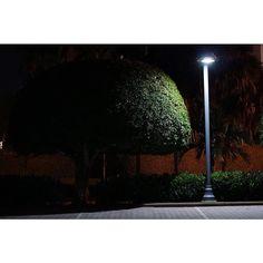 Parking lot - Open House Series - Florida http://ift.tt/1T5JTv5 #minimalzine #noicemag #fdicct #archivecollectivemag #rentalmag #lekkerzine #subjectivelyobjective #minimalmood #thisveryinstant #oftheafternoon  #thentherewasus #minimalism #myfeatureshoot #heylovlab @mrneilmason #mrneilmason #motherlondon #minimalist #minimalism #archivecollectivemag #brettmagazine #phroommagazine #lasvegas #vagas #minimalist #creativereview #neilmasonphotography @archivecollectivemag #architecturephotography…