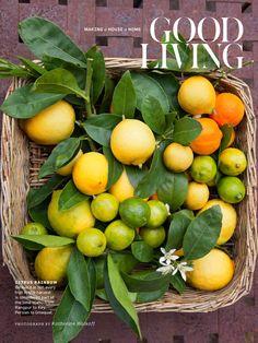 #Lemons in Martha Stewart living