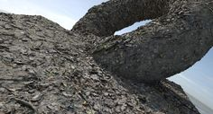 RDTexture - Muddy-forest-floor, Christoph Schindelar on ArtStation at https://www.artstation.com/artwork/ePe66