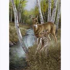 Doe and Fawn Stream Scene colored example