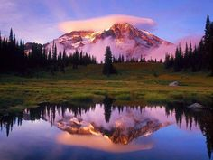 mount shasta public domain - Google Search