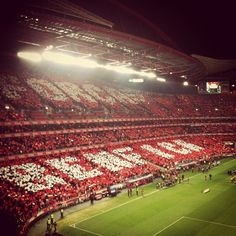 """See 4781 photos from 11078 visitors about carrega benfica, glorioso slb, and clube. """"As an American and lover of USA football, this experience was. Soccer Stadium, Football Stadiums, Football Soccer, Basketball, Benfica Wallpaper, Soccer Games, World Of Sports, Sports Clubs, European Football"""