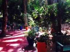 The jardin majorelle in marrakesh - beautiful gardens designed by Yves St Laurent, who brought this specific colour blue to marrakesh