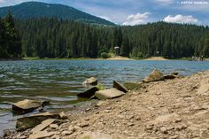 Синевір - найбільше та одне з найкрасивіших гірських озер Карпат. Розташоване на висоті 989 метрів над рівнем моря поблизу села Синевирська Поляна, Міжгірського району, Закарпатської області.