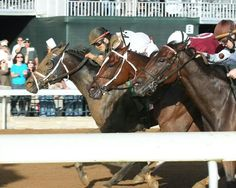Got Lucky gets by Untapable and Yahilwa in the Spinster