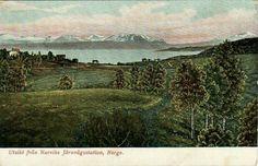 Nordland fylke Narvik utsikt fra Narviks Järnvägsstation tidlig 1900-tall svensk utgiver