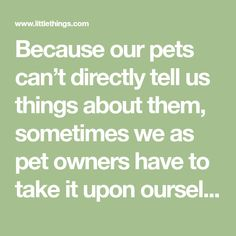 Because our pets can't directly tell us things about them, sometimes we as pet owners have to take it upon ourselves to do some digging, while paying attention to key clues. And those clues can sometimes come from some pretty unlikely places. Take, for instance, the position that your dog sleeps in. Believe it or...