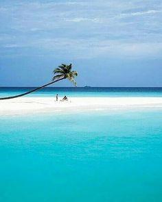 The Maldives Islands #Maldives  #travel #view #awesome #wonderful #exploretocreate #amazing #summervibes #igmasters  #discoverearth  #travelblog #travelgoals #nature #nofilter #summer #mytinyatlas #blue #isleofpalms #worlderlust #bestvacations #tlpicks  #luxurytravel #neverstopexploring #island #dreams #wanderlust  #bliss #photooftheday #paradise #indianocean