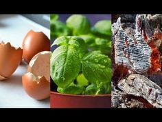4 Trucos sencillos que facilitaran tu vida en el jardín y la huerta - YouTube