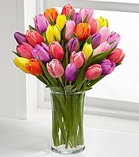 April's Flower of the Month is Tulips - Starting at $29.99 | Get FREE Samples by Mail | Free Stuff