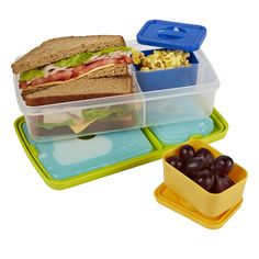 Bento Lunch Kit with Insulated Carry Bag – Fit & Fresh