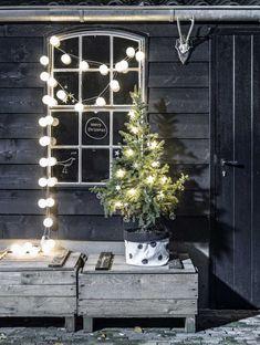 kerstboom-kerstmandje-lichtjes