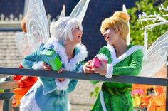 ACF - Tinkerbell and Periwinkle