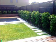 Nice and clean looking backyard. Makes it look even bigger. I like the fence too. It's kinda allow the wind to flow in.