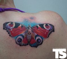 butterfly tattoo by Pete Belson