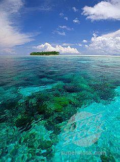 Banda Island   Maluku, Indonesia   UFOREA.org   The trip you want. The help they need.