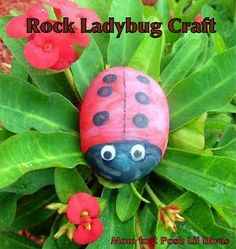 Rock ladybug craft + books to go along, good for insect unit
