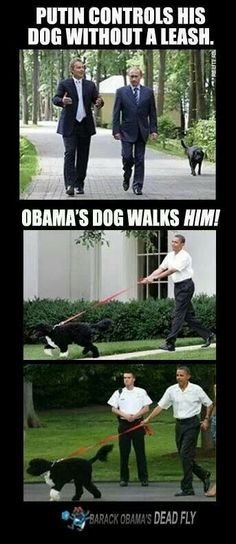 Obama Bahahaha , Putin walks his own dog, Obama's dog walks Obama. And the armed security guard is protecting..Obama from the dog?