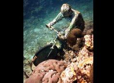Underwater Grenada Sculpture Gallery